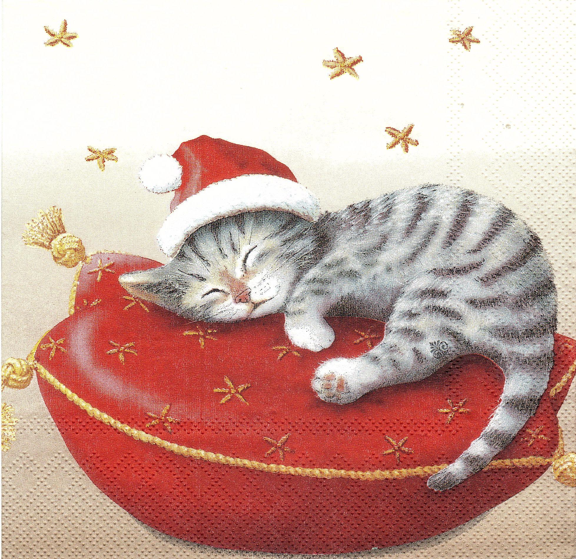 хотела картинки спящий кот декупаж жить вам